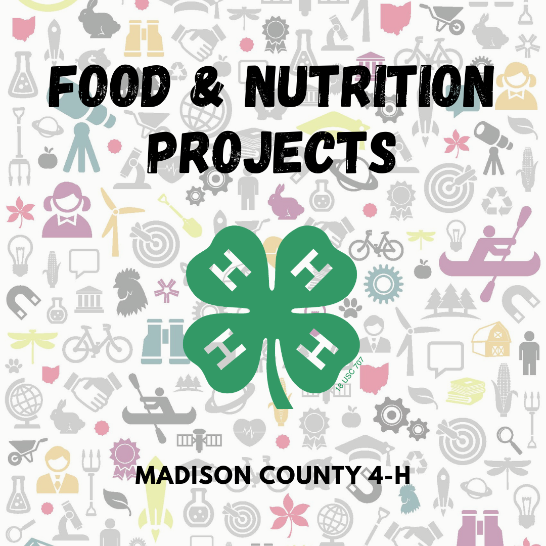 food and nutrition projects