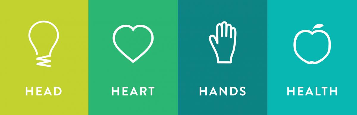 Head Heart Hands and Health graphic